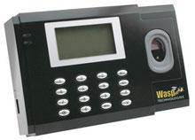 Wasp 633808550592