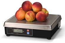 Photo of Weigh-Tronix 6720