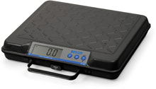 Photo of Avery Weigh-Tronix GP Series: GP100, GP250